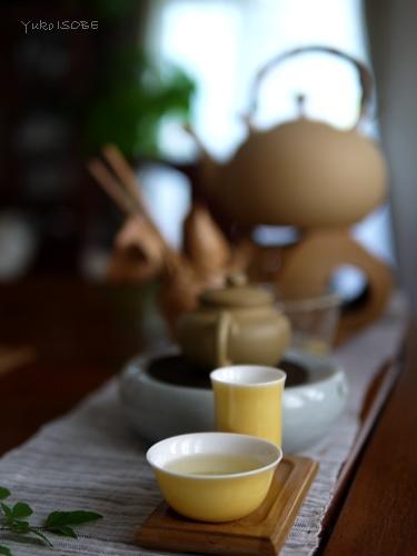 7月の中国茶五種のみ比べ_a0169924_22491773.jpg