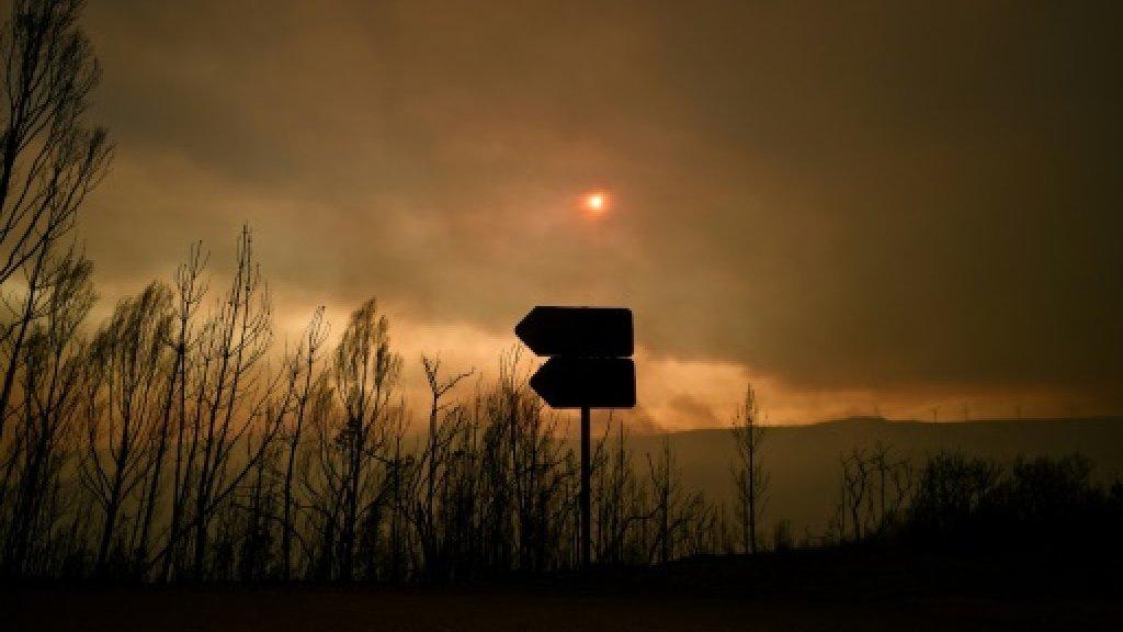 8月の運勢 日食月蝕がやってくる!_b0213435_19131763.jpg