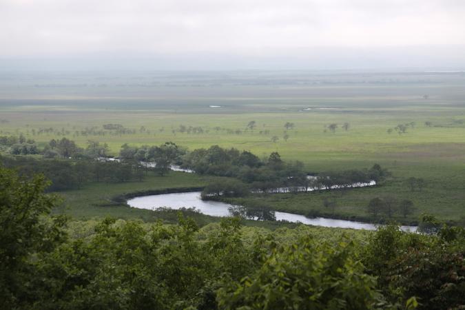 釧路湿原国立公園誕生30周年 7月31日_f0113639_1825127.jpg