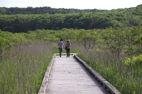 釧路湿原国立公園誕生30周年 7月31日_f0113639_18254395.jpg