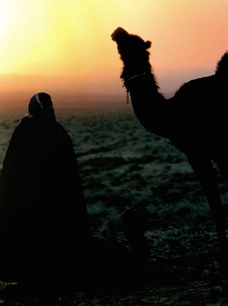 ARAB シリアの砂漠に生きる家族_a0087957_00373294.jpg
