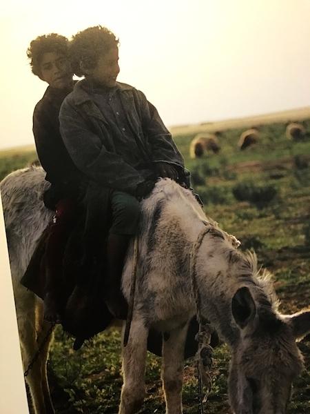 ARAB シリアの砂漠に生きる家族_a0087957_00375060.jpg