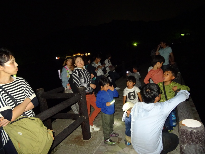 ZooCan企画「ウミホタル観察&カブトムシ探し_c0108460_00420392.jpg