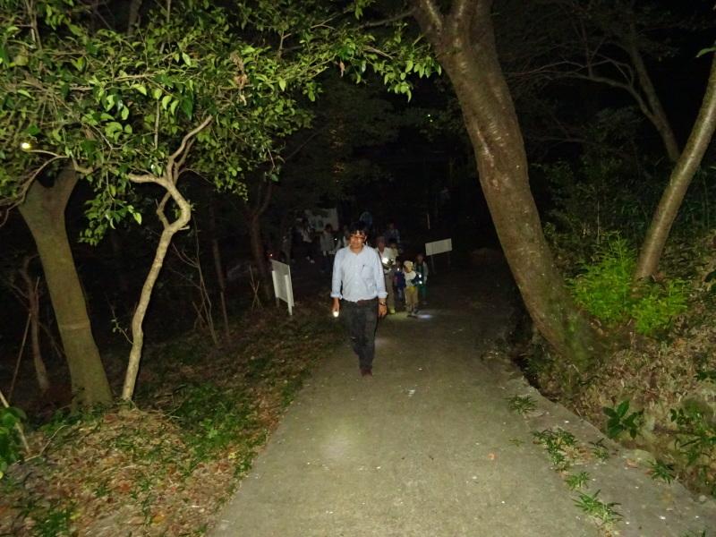 ZooCan企画「ウミホタル観察&カブトムシ探し_c0108460_00453093.jpg