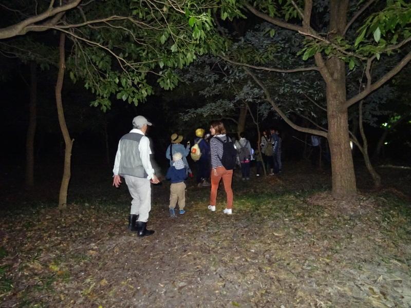 ZooCan企画「ウミホタル観察&カブトムシ探し_c0108460_00454358.jpg