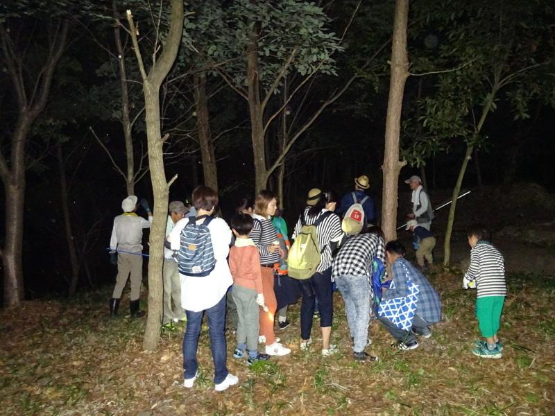 ZooCan企画「ウミホタル観察&カブトムシ探し_c0108460_00455853.jpg