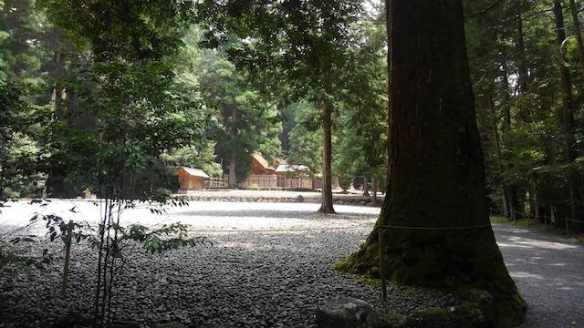 陰ヨガ yinyoga 『大杉谷トリップ & オープンクラスのご案内』_d0240462_01052831.jpg