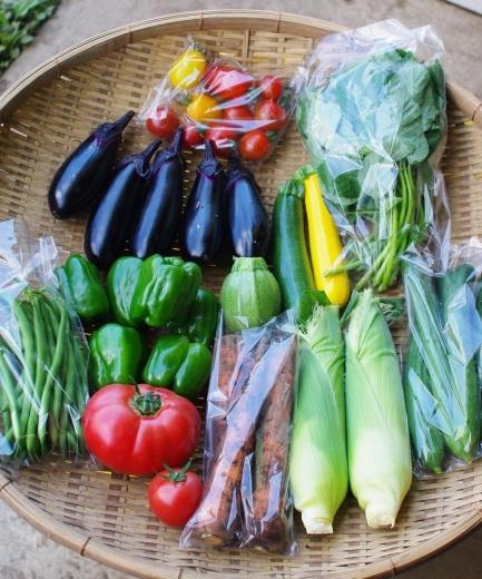 今週の野菜セット(8/1~8/5着)_c0110869_13042344.jpg