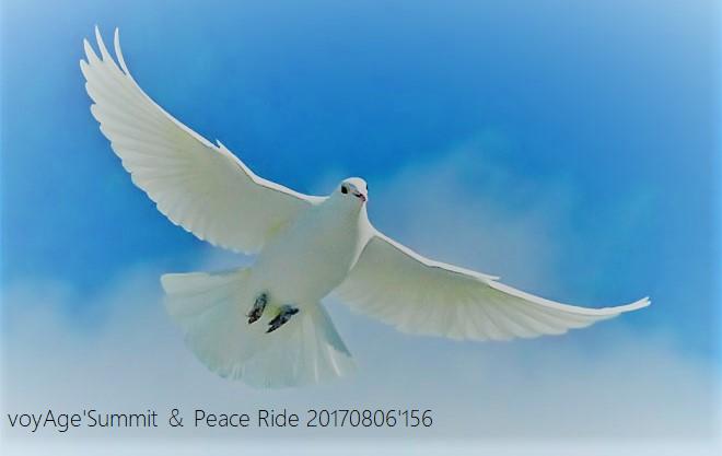 8月6日(日)「voyAge \'Summit & Peace Ride 20170806\'156」_c0351373_21241959.png