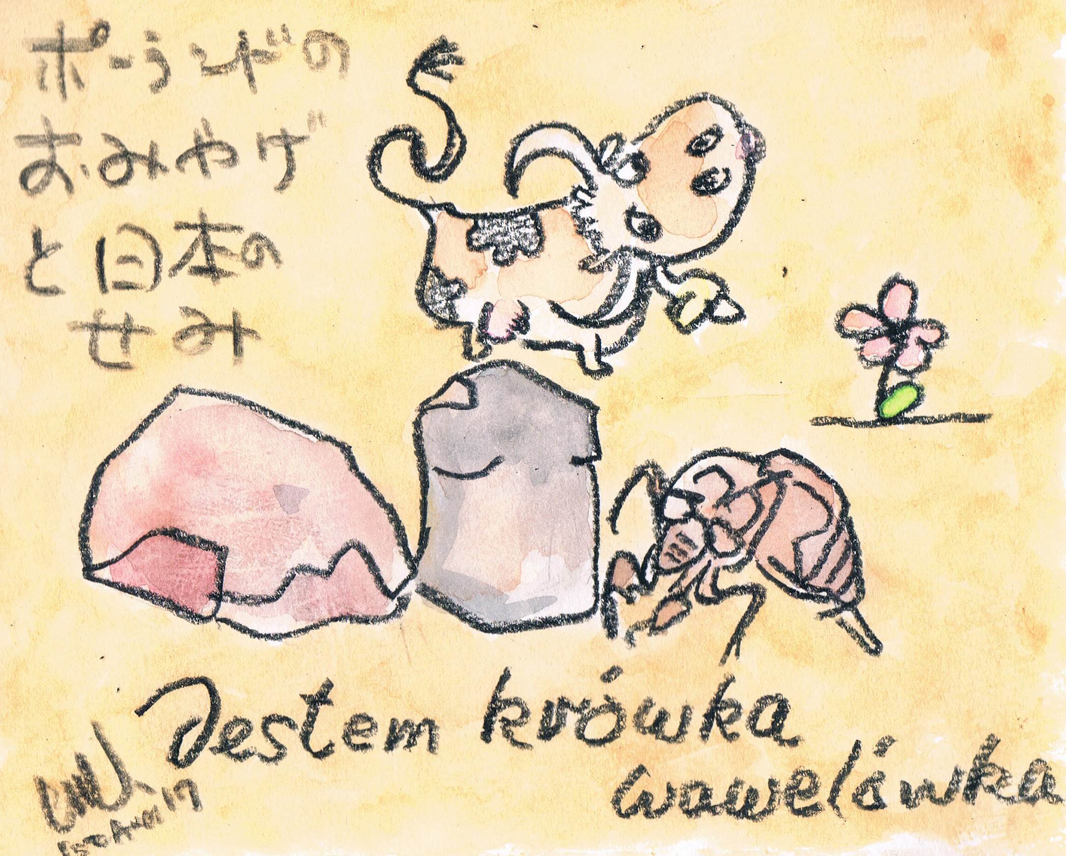 ポーランドのお土産と日本の蝉_e0232277_15361028.jpg