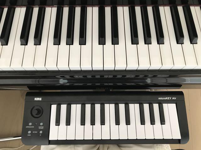 <ピアノ演奏するための、手や指の大きさや強さ>ブログ:ウォンウィンツァン_f0236202_1212154.jpg