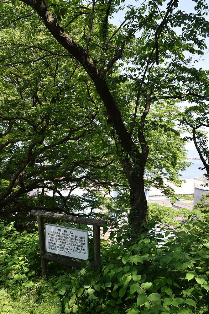 太平記を歩く。 その110 「金ヶ崎城跡」 福井県敦賀市_e0158128_20020973.jpg