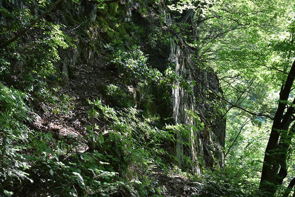 太平記を歩く。 その114 「杣山城跡」 福井県南条郡南越前町_e0158128_22041841.jpg