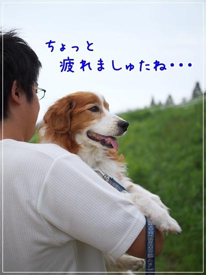 d0013149_00212077.jpg
