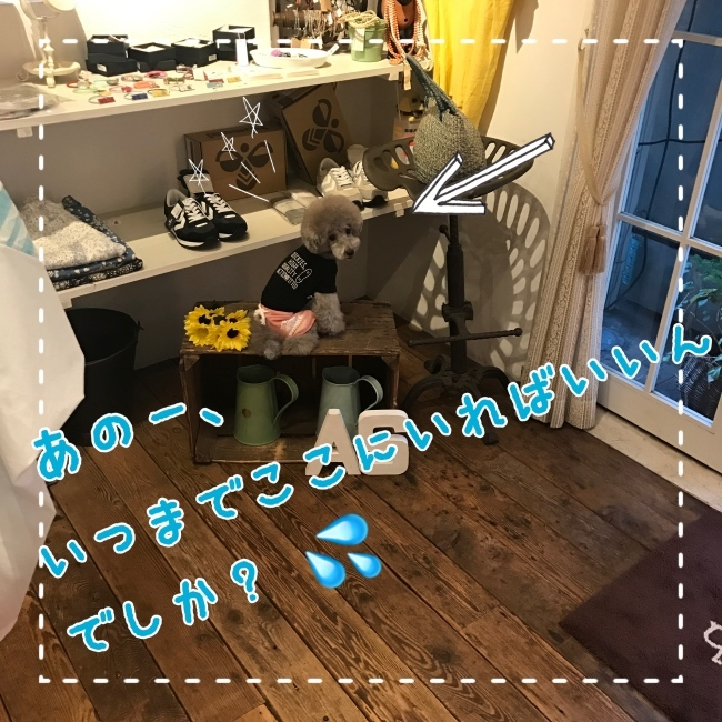 f0170910_10512812.jpg