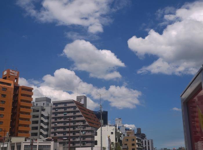 和歌山便り_b0093754_20501145.jpg