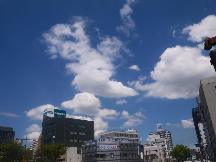 和歌山便り_b0093754_20502135.jpg