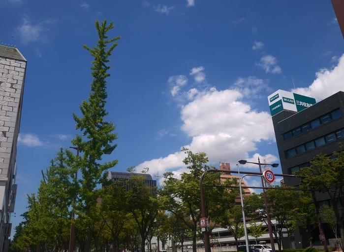 和歌山便り_b0093754_20503128.jpg