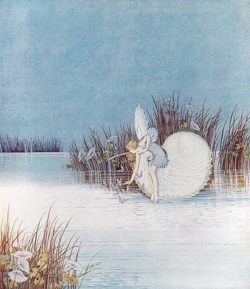 イダ・レントール・アウスウェイト画のタコブネに乗る妖精たち_c0084183_16421542.jpg