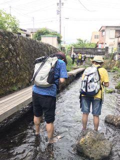 長泉町アニソンライブ&柿田川湧水群散策_f0204368_01200469.jpg