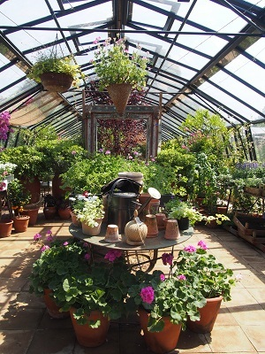Petersham Nurseriesでランチ_f0238789_22484707.jpg