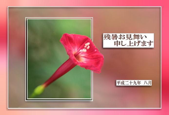 f0164592_21372676.jpg