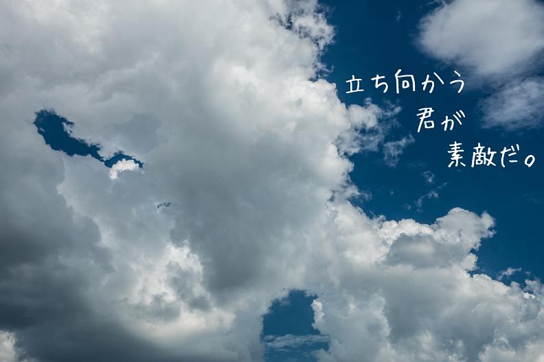 f0189086_20042785.jpg
