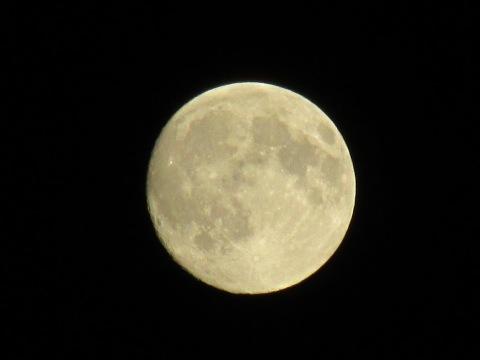 昨日の月と今日の月_d0072917_20430743.jpg