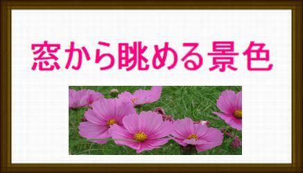 b0133750_20573419.jpg