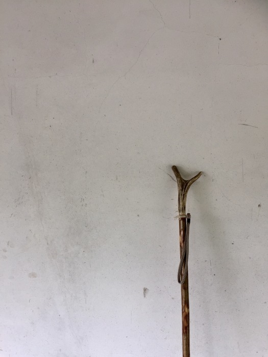 杖を持って 瞬間移動ー。ありがとう!_d0105967_10551526.jpg
