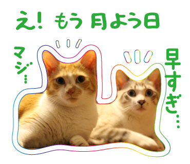 LINEスタンプ_a0333195_00172903.png