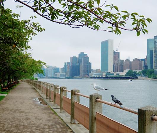 ニューヨーク版シリコン・バレーの拠点、ルーズベルト島へ!!_b0007805_10304890.jpg