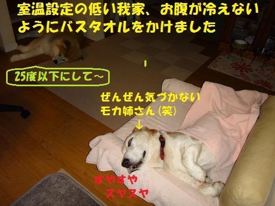f0121712_15185780.jpg