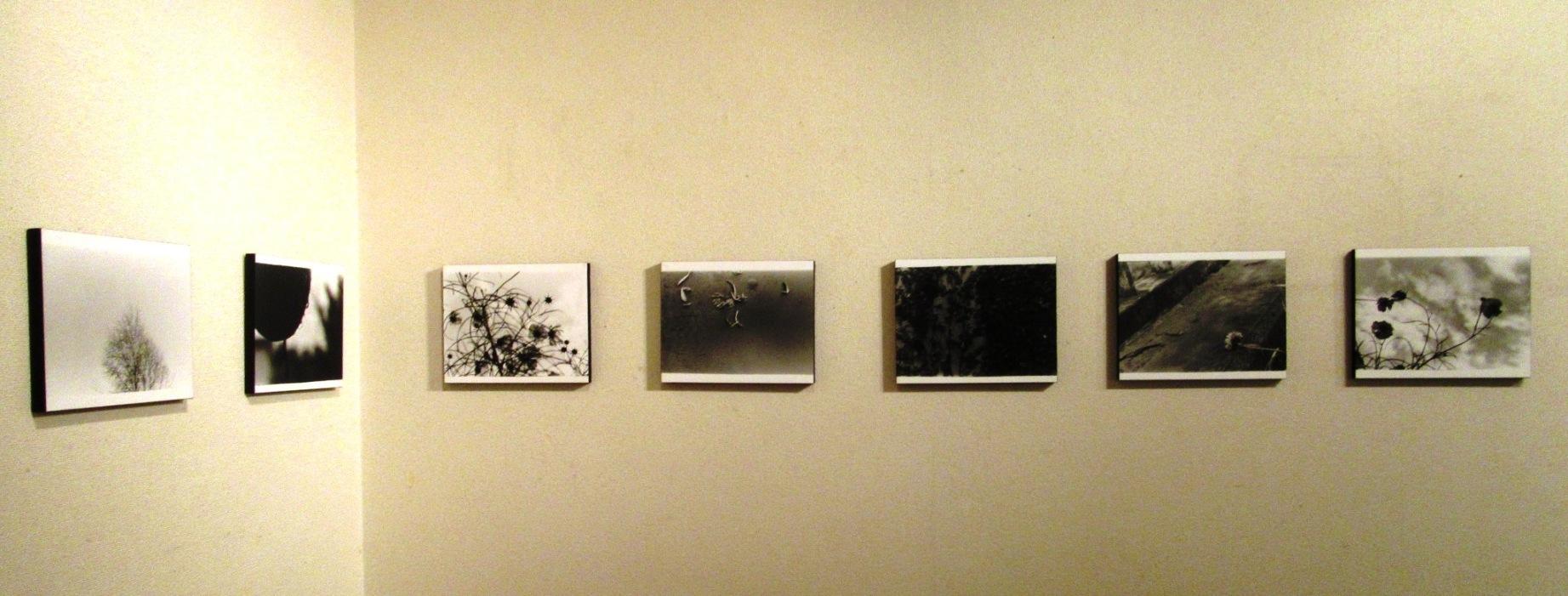 2569)②「『moment』 篠原 奈那子(藤女子大学4年)写真展」 アートスペース201 8月3日(木)~8月7日(火)_f0126829_11073525.jpg