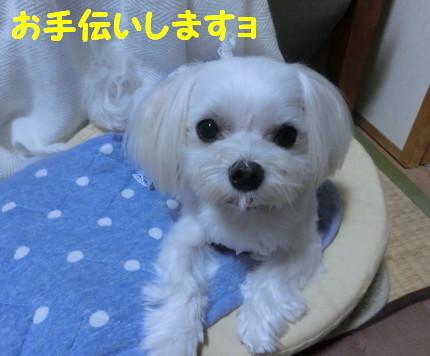 b0193480_14540548.jpg