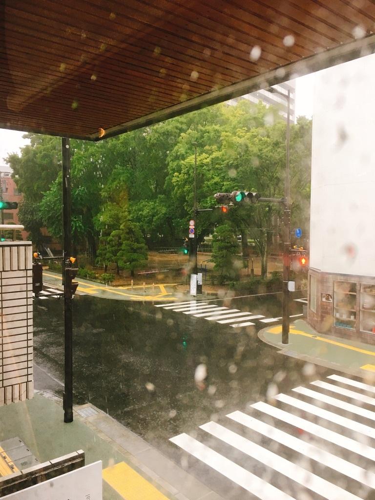 台風5号_a0039184_14234641.jpg