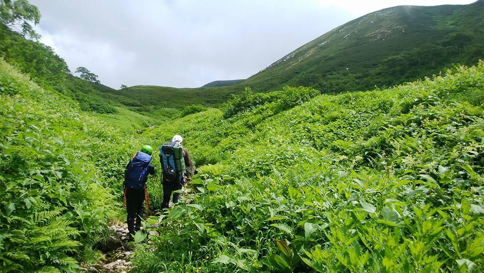 日本の美しき大自然 金木戸川双六谷 _e0231387_16033864.jpg