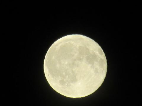 満月!_d0072917_21000135.jpg