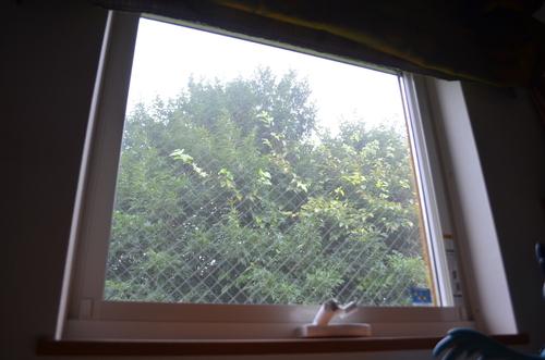 立秋で台風。_b0207642_1520314.jpg