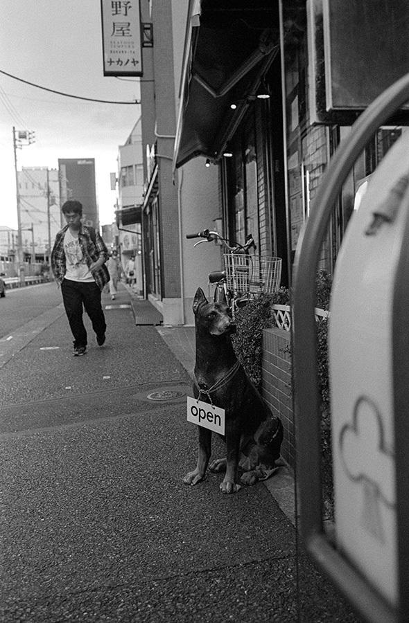 【21st Century Snapshotman 】35mm 2本勝負 ちょっとだけロモグラフィー 東中野ー中野ー新宿(2017 6/5)_c0035245_01202287.jpg