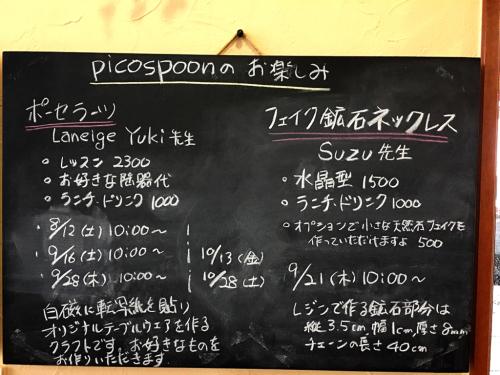 pico spoon@2_e0292546_00121266.jpg