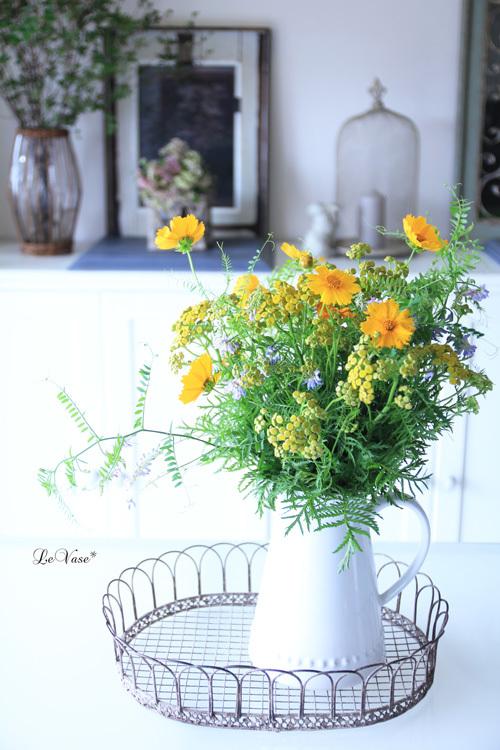 軽井沢の無農薬野菜とお花が届きました!_e0158653_00231363.jpg