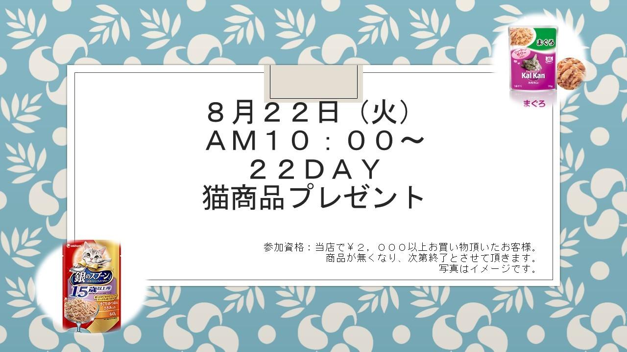 1708081 ニャンニャンDAYイベント告知_e0181866_09452811.jpg