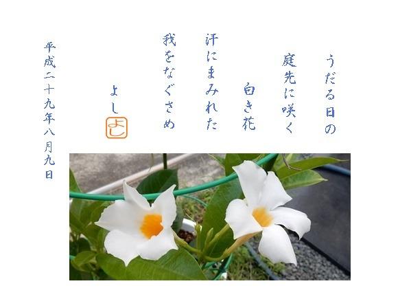 e0033229_18561987.jpg