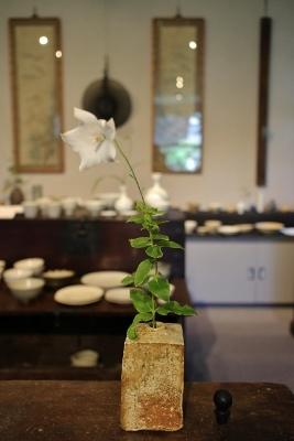 韓国古陶磁探求陶人展 開催しています_a0279848_15162203.jpg