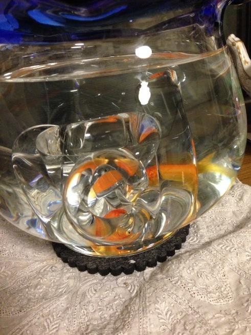 金魚ちゃんね_c0185356_21251900.jpg
