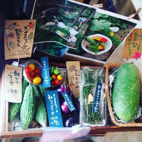 お盆は通常通りの営業です! と、新鮮野菜たち。_c0353492_12431349.jpg