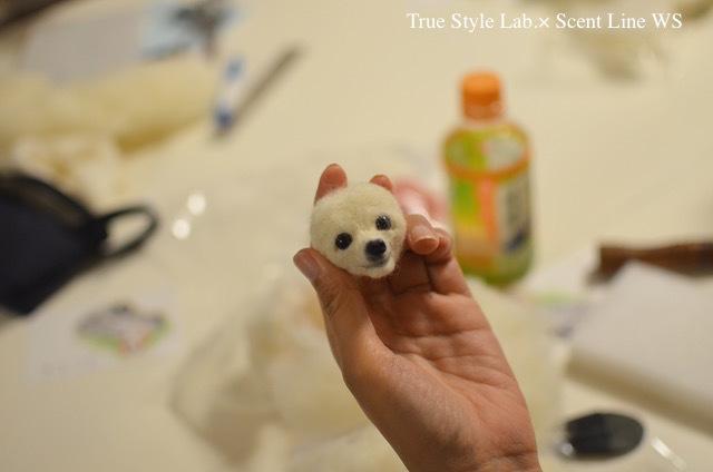 羊毛フェルトWS「マルチーズの子犬」レポート1_c0099133_20500107.jpg