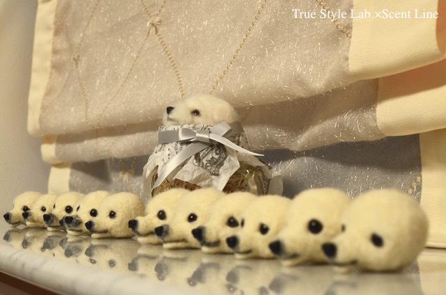 羊毛フェルトWS「マルチーズの子犬」レポート1_c0099133_21061882.jpg