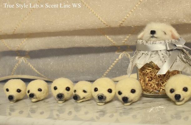 羊毛フェルトWS「マルチーズの子犬」レポート1_c0099133_21070444.jpg